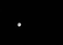 venus-08-04-2010